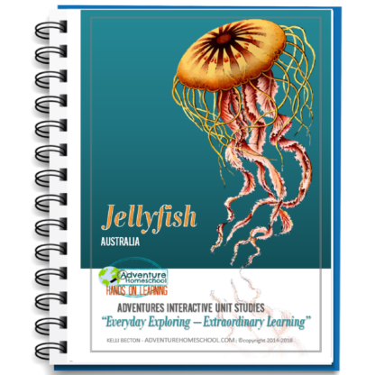 jellyfish us cover