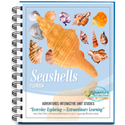 seashells unit study cover tran